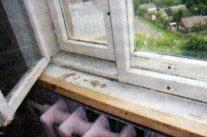 Окно «под евро»