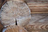 Деревянный дом: преимущества и особенности возведения
