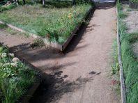 Садовые дорожки (фото)