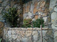 фото2. Ландшафтный дизайн