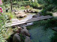 Маленький пруд (фото)