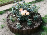 Садовая клумба (фото)