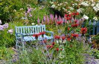 Защита растений от низких температур и заморозков
