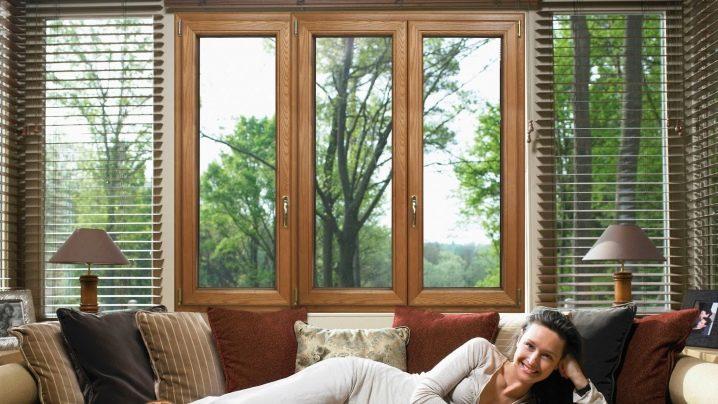 И у окон есть стиль: разнообразие деревянного оконного дизайна, виды стекол