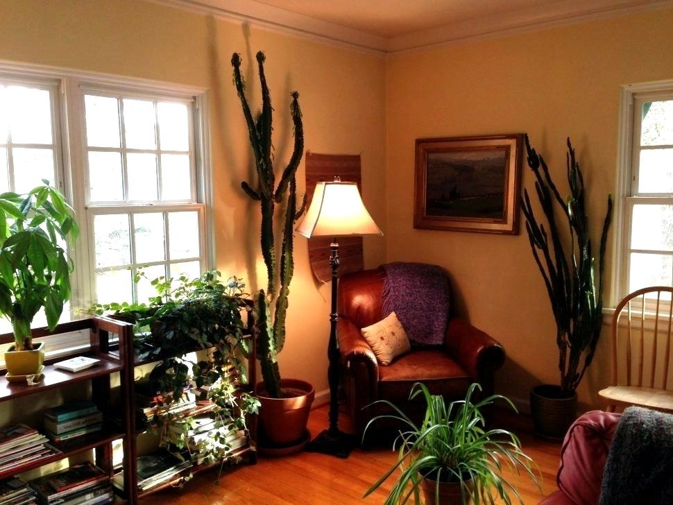 Фен-шуй в интерьере квартиры